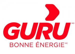 Guru Energy